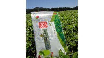Чай зелёный пакетированный «Касэдамидори»